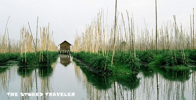 inle-floating-garden.jpg